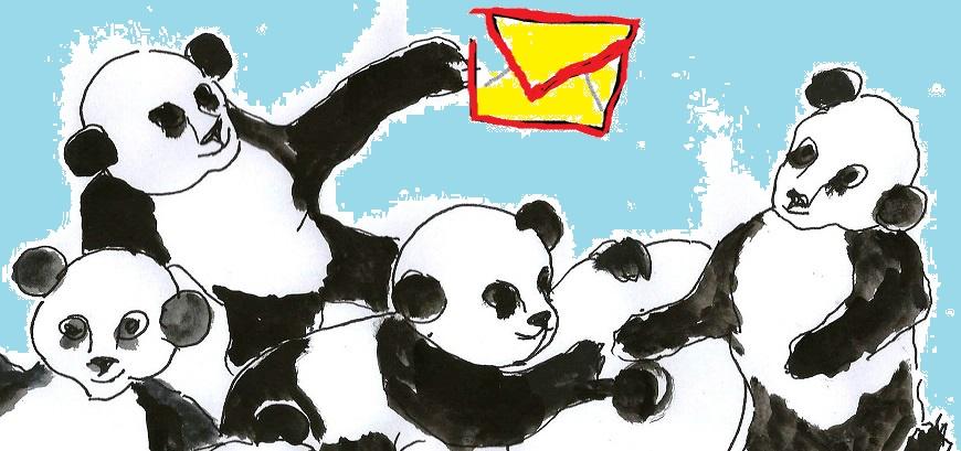 Pandas para Newsletter.jpg
