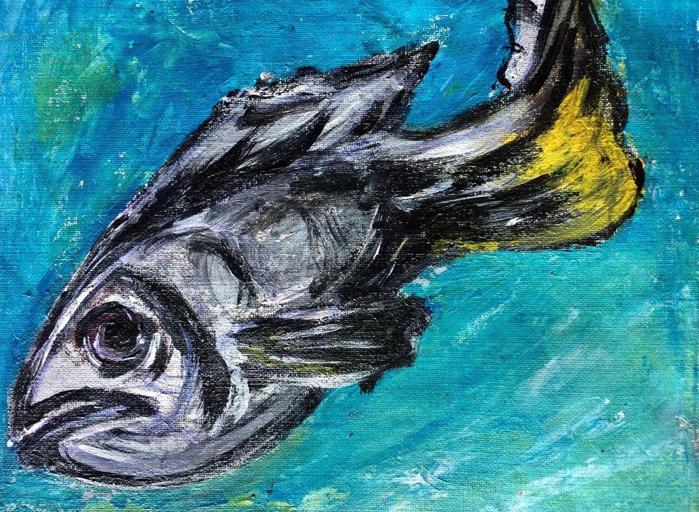 """FISH II"""