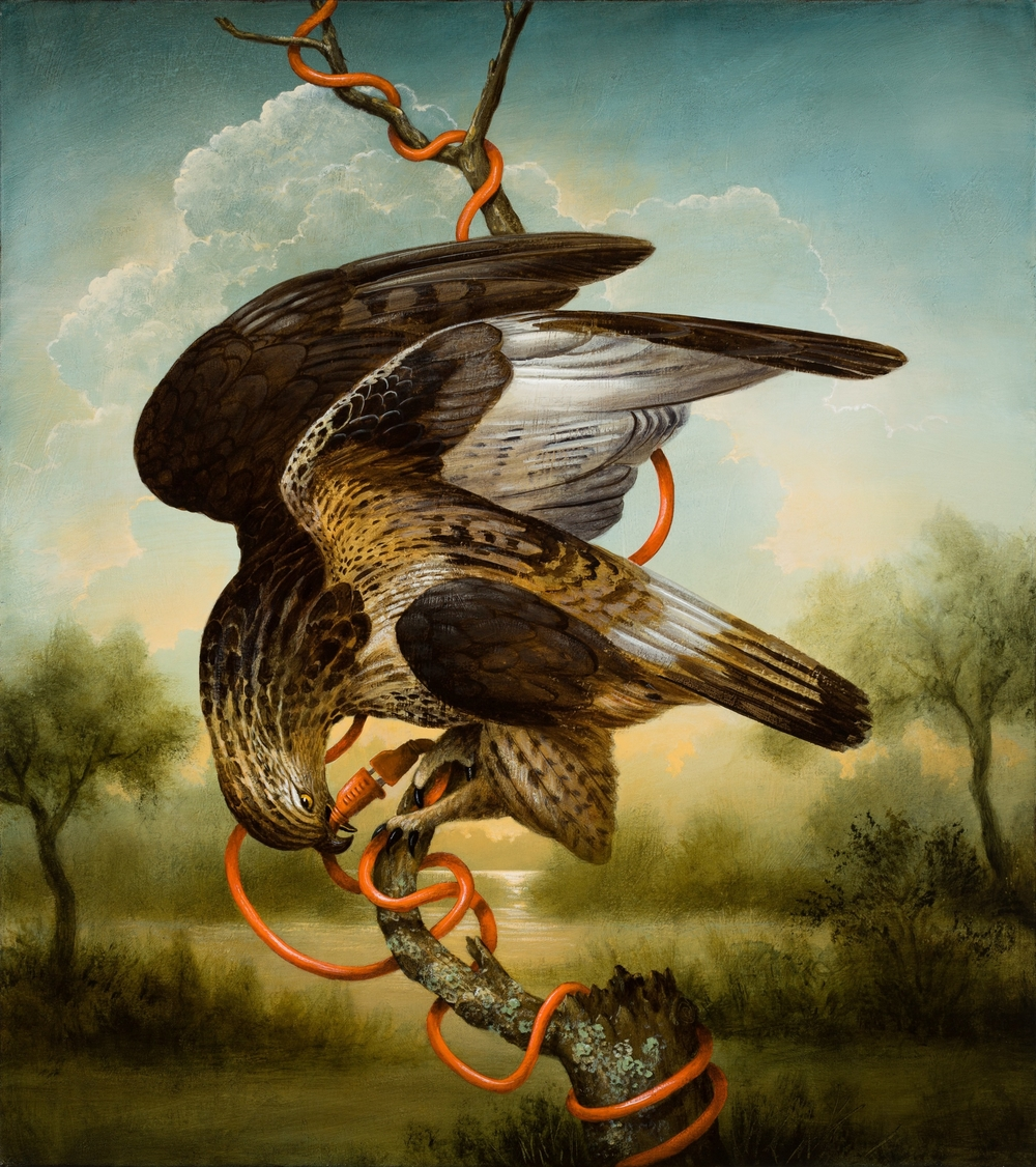 Birds of America: Prometheus' Regret
