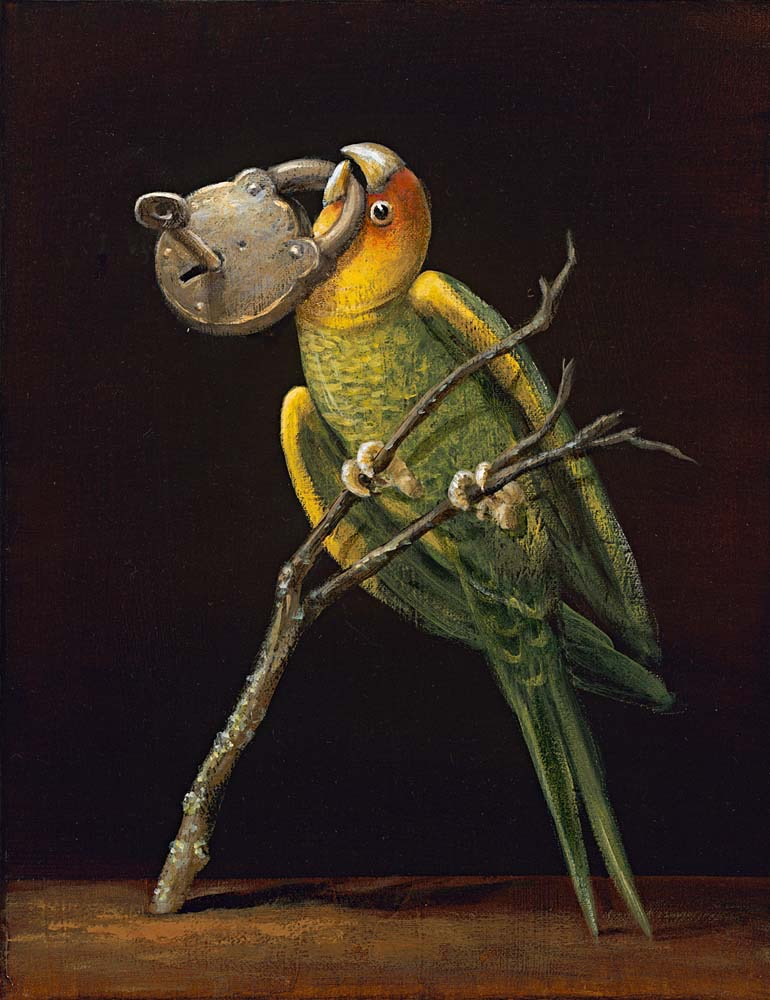 Birds of America: Carolina Parrot, 2011