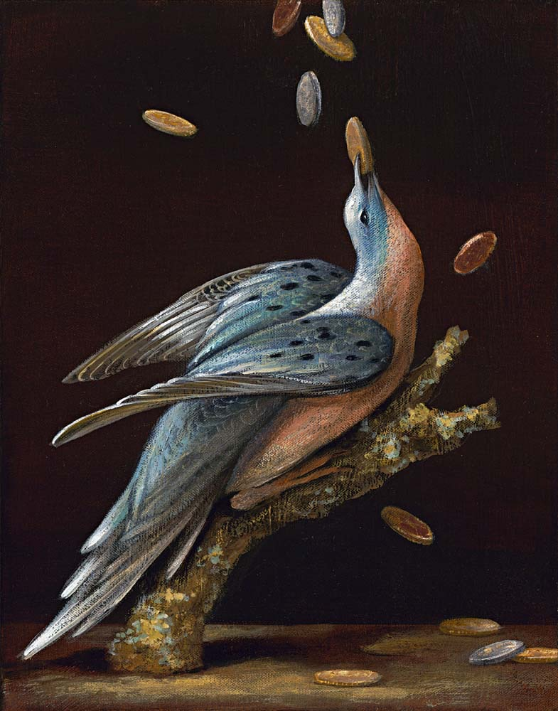 Birds of America: Passenger Pigeon, 2011