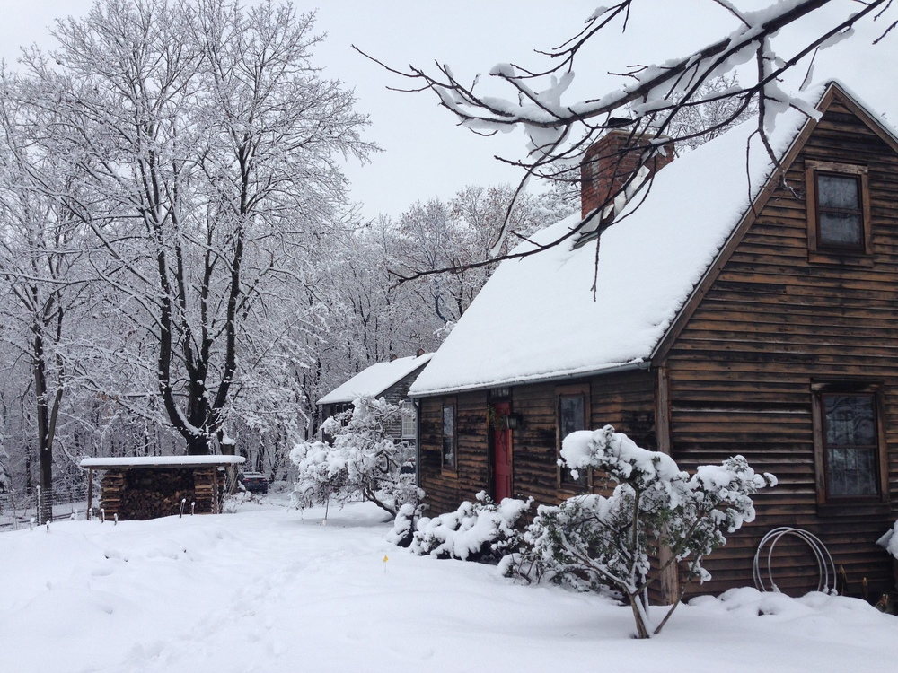 Saltbox in the winter