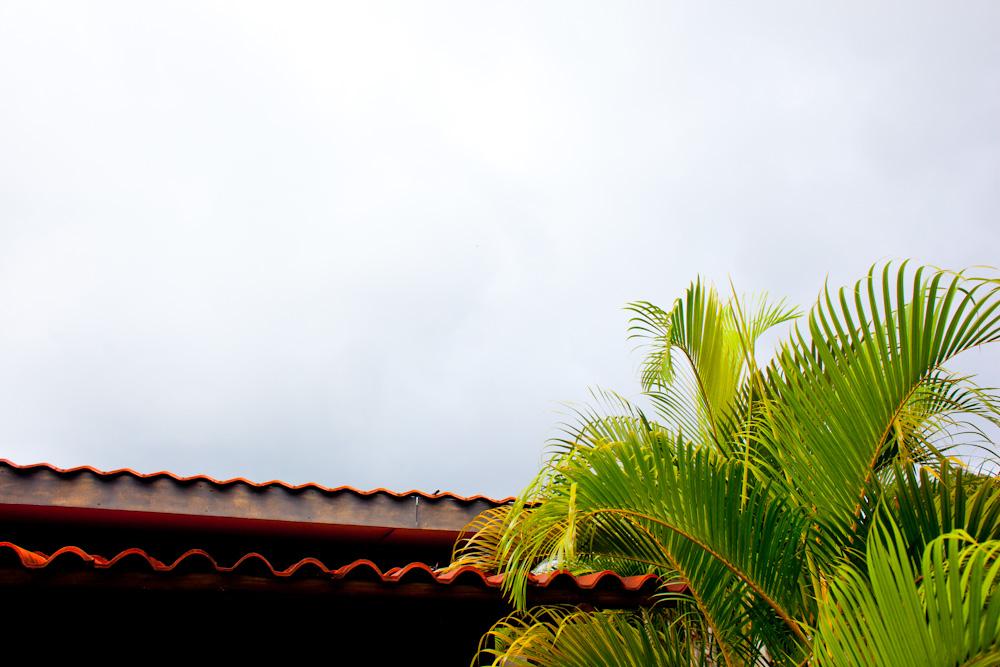 CostaRica2010-10-25_0031