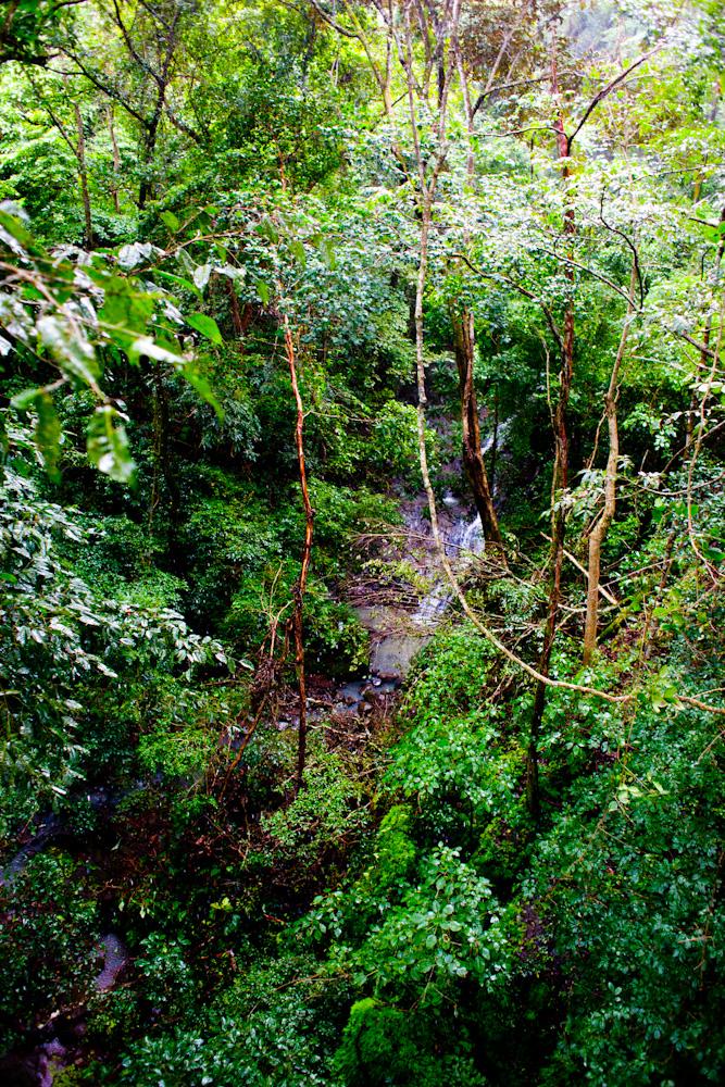 CostaRica2010-10-25_0126