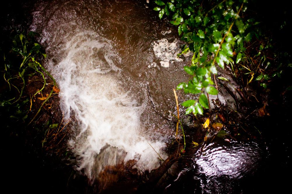 CostaRica2010-10-25_0239