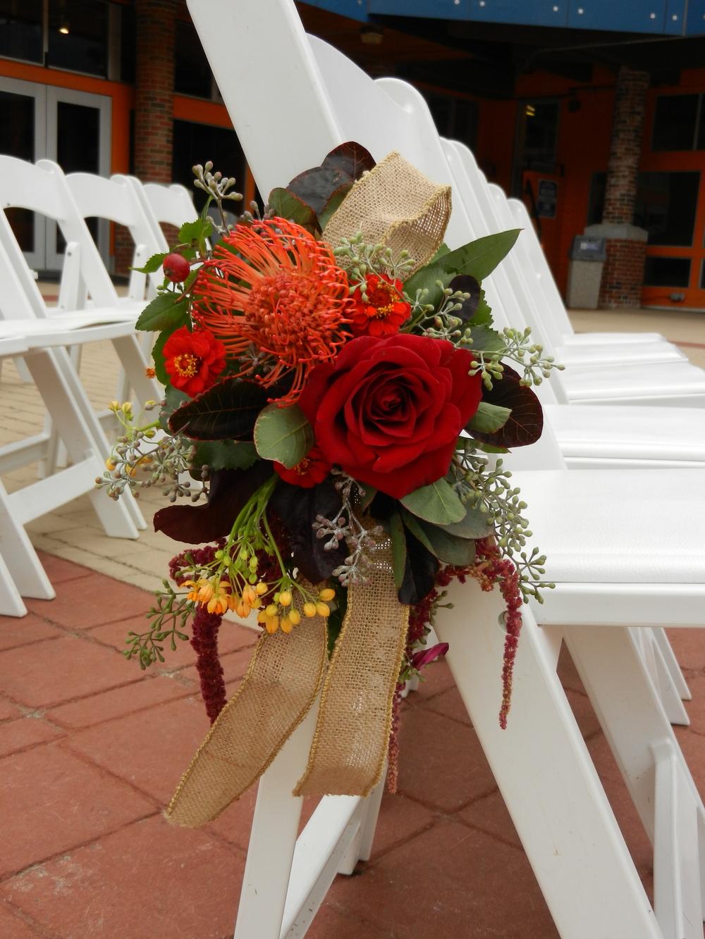 fall cahir_zoom_rose_protea.jpg