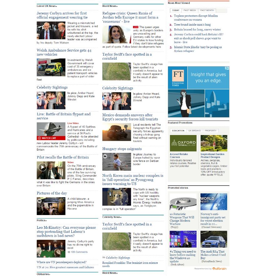 The telegraph screen grab 2.JPG