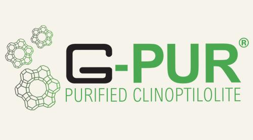 g-pur-logo.png