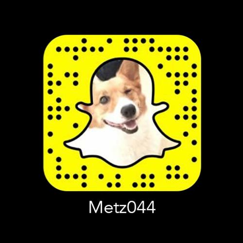 metz044 code.png