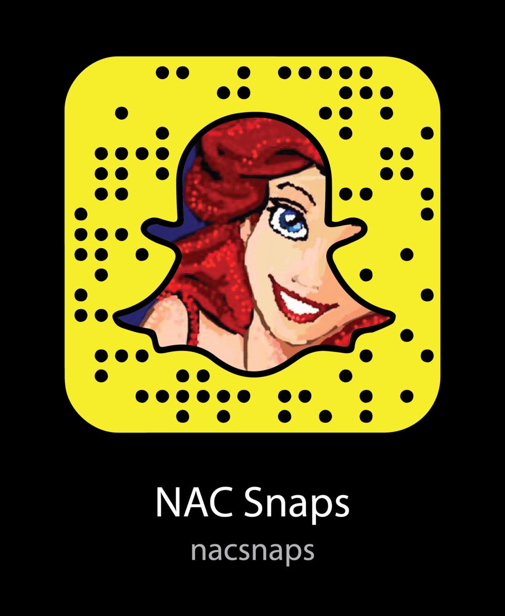 nac-snaps-artists-snapchat-snapcode