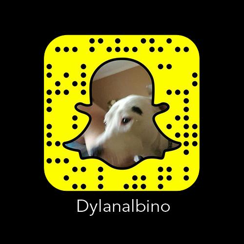 snapcode_Dylanalbino_snapchat.png