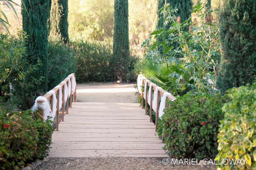 Mariel-Calloway-Wedding-Photographer-Los-Angeles-NatRory-22.jpg