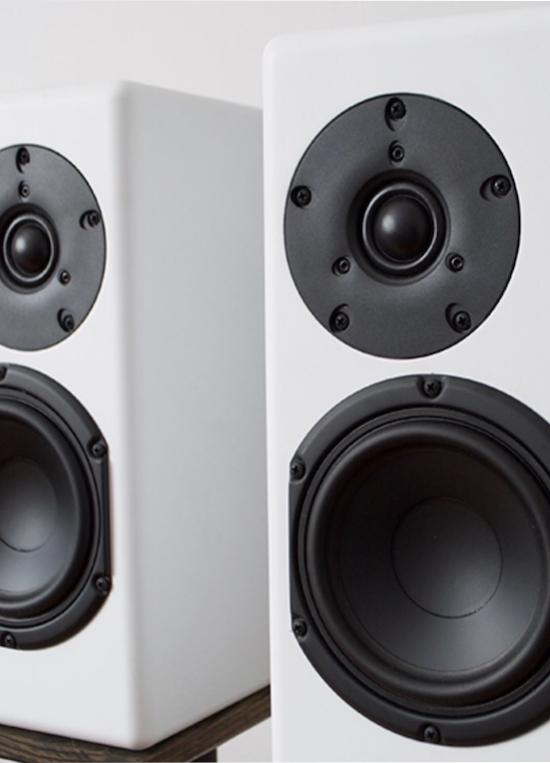 Are Audio Light Roast 2.0 Loudspeakers