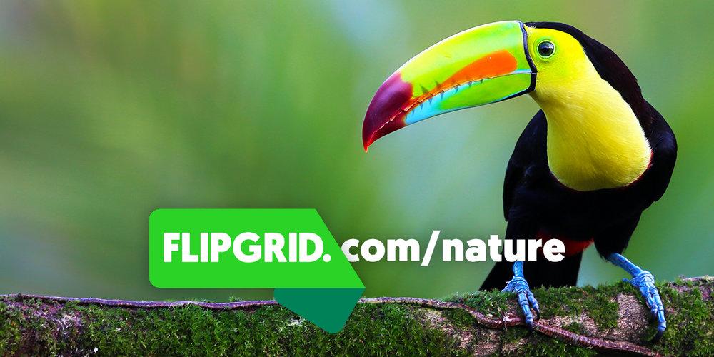 NatureGrid_Image.jpg