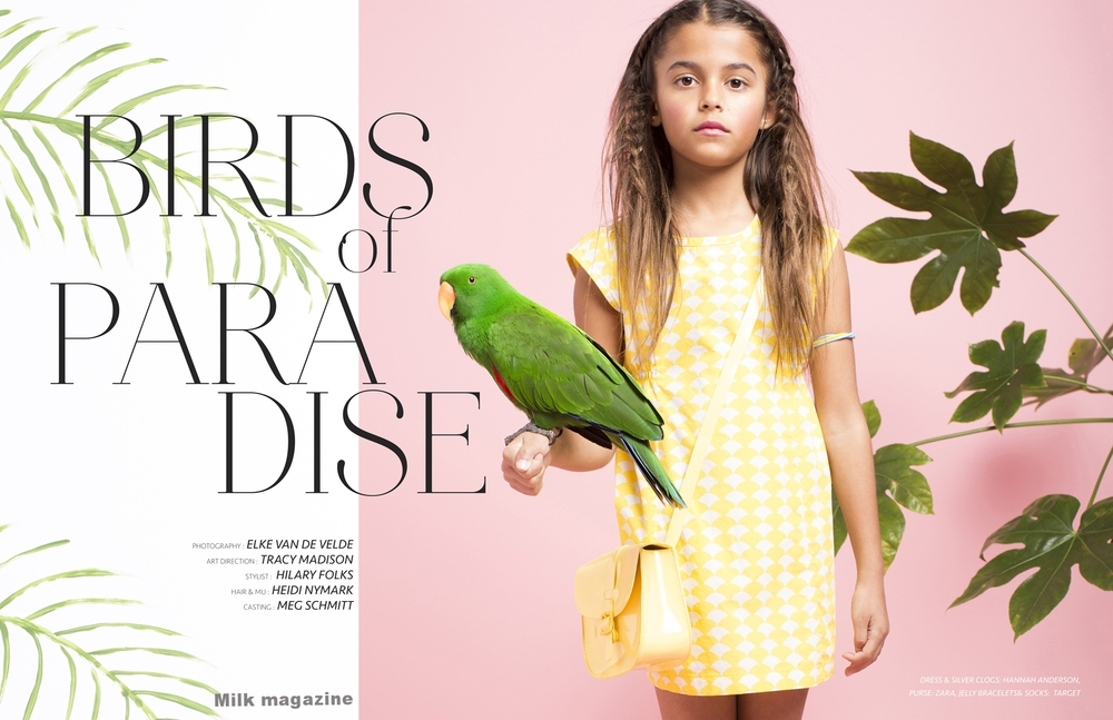 BIRDS_of_PARADISE-1web.jpg