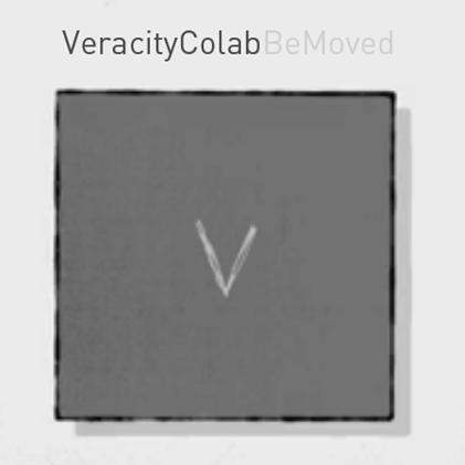 veracitycolab-logo.png