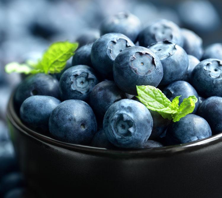 blueberrys.jpg