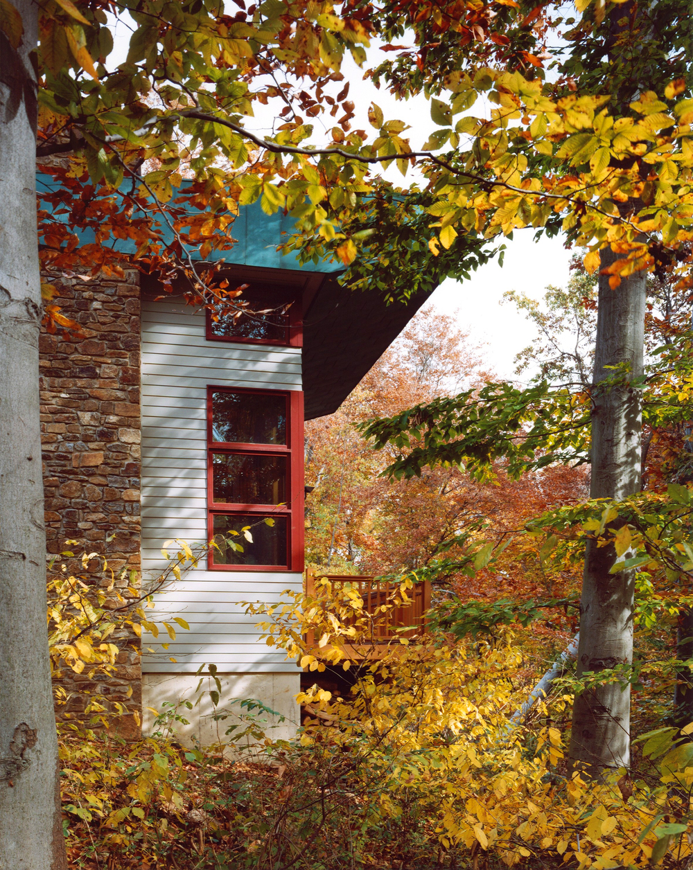 315 Taylor Residence 08.jpg
