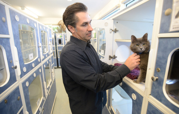 Ted Stevens, Long Beach Animal Care Services Manager
