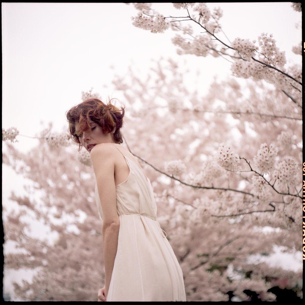 Portra-160_Ryanne_Cherry-Blossoms014.jpg