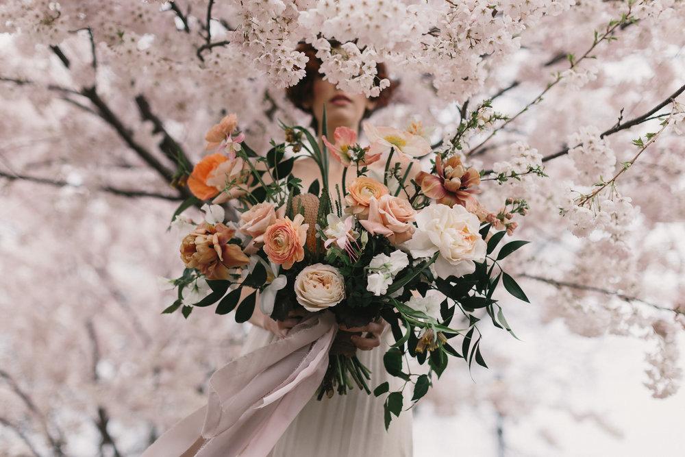 ryanne-hollies-photography-blush-creative-toronto-editorial-51.jpg