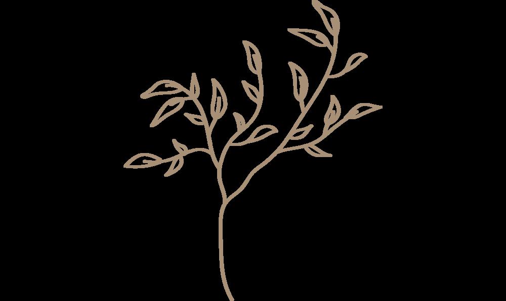 brown-wild-foliage-blog.png