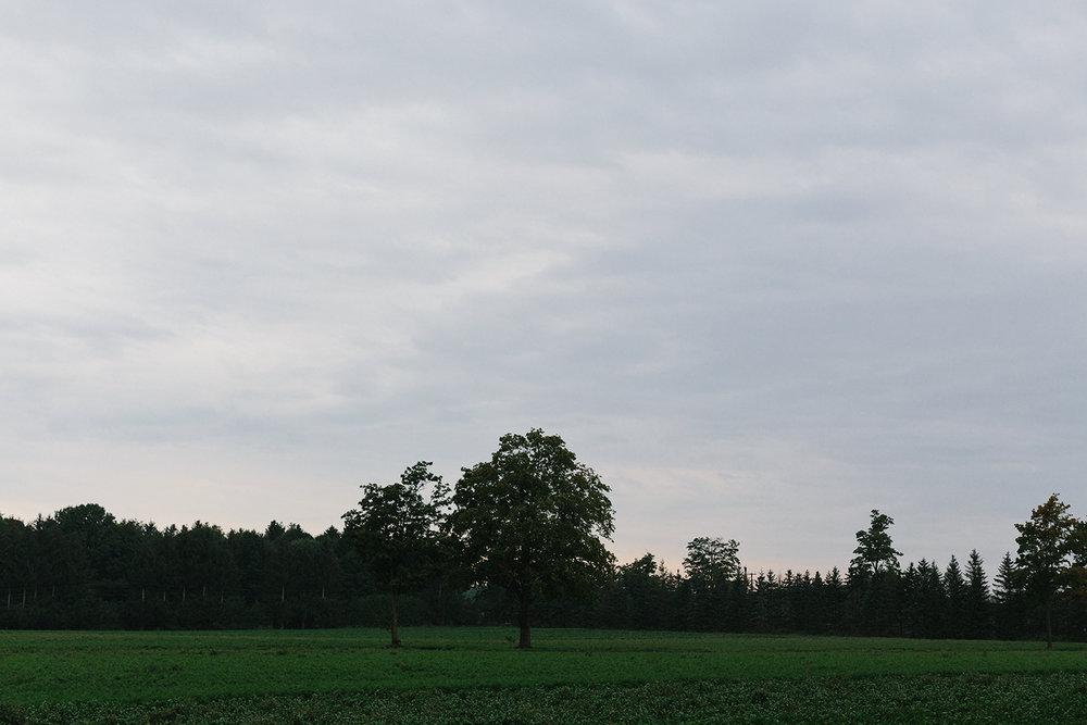 ED9674~1.JPG