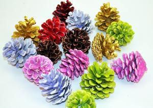 small-pine-cones.jpg