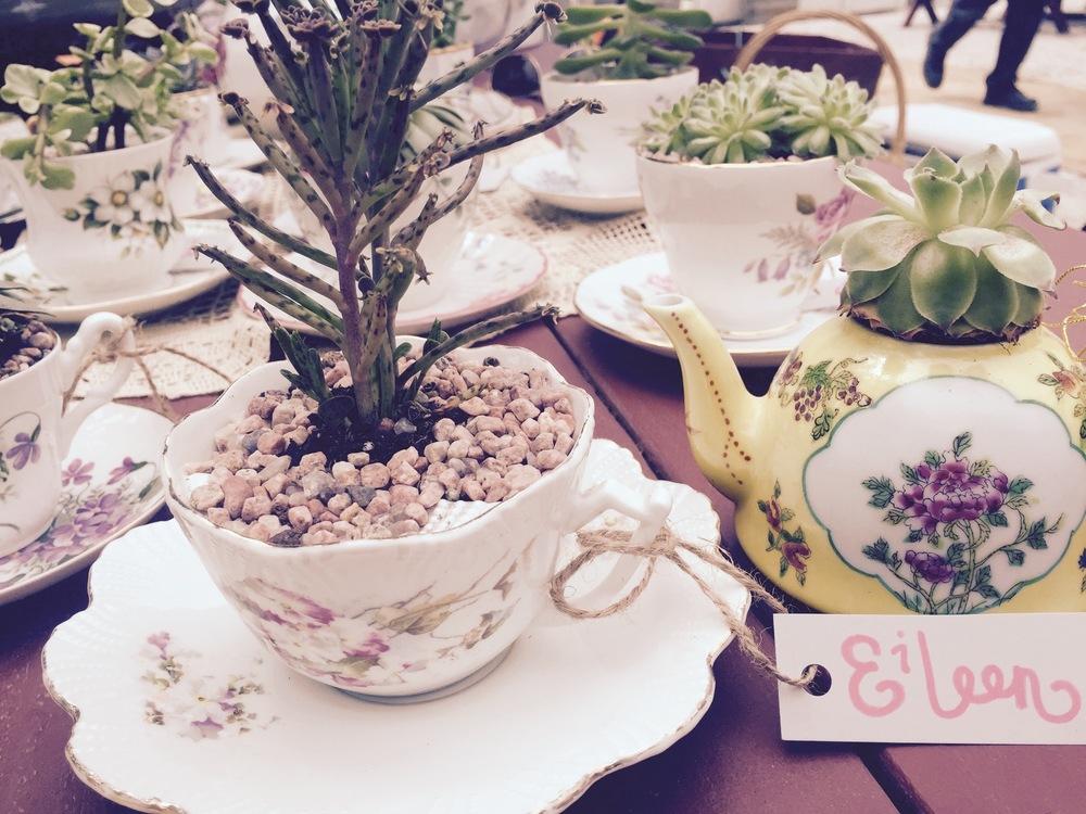 Tea Cups Tea Kettles Vintage Plants Succulents Bridal Shower Decor