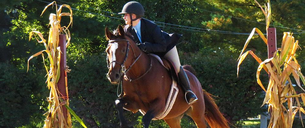 7b397aefc4d Contact — INTER-SCHOOL HORSE SHOW SERIES