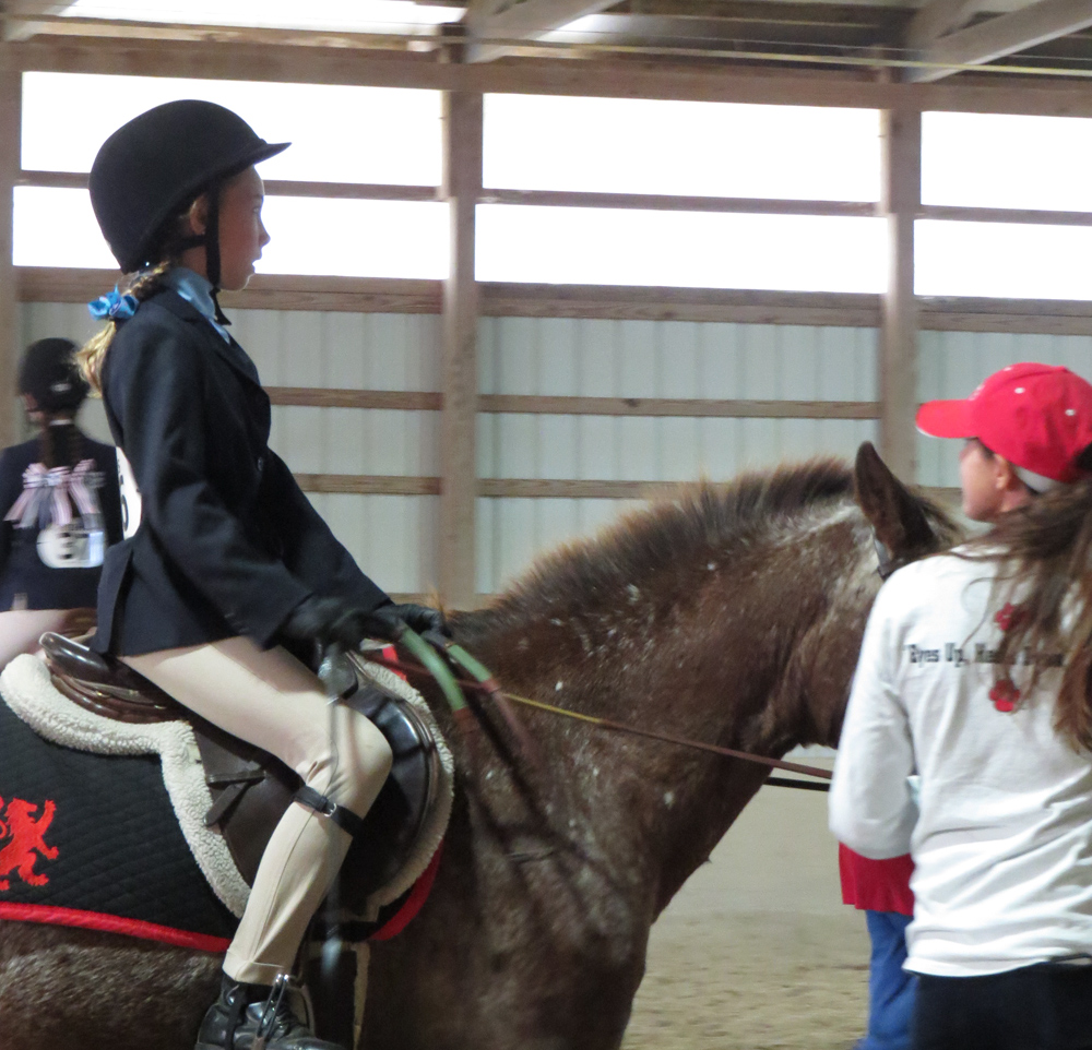 Display your school spirit on your saddle pad!