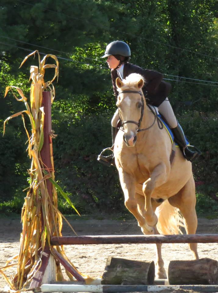 Advanced riders may compete in The Surrey Equitation Class
