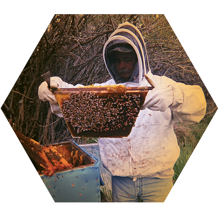 holding-honeycomb.png