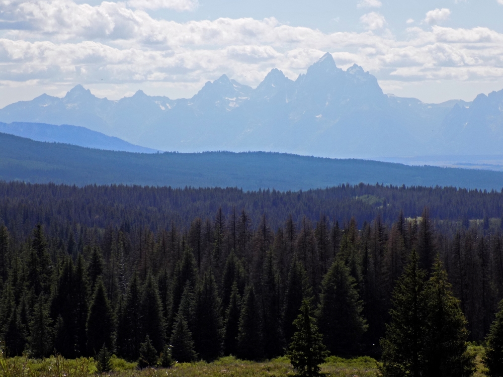 View of the Grand Teton from Togwotee Pass