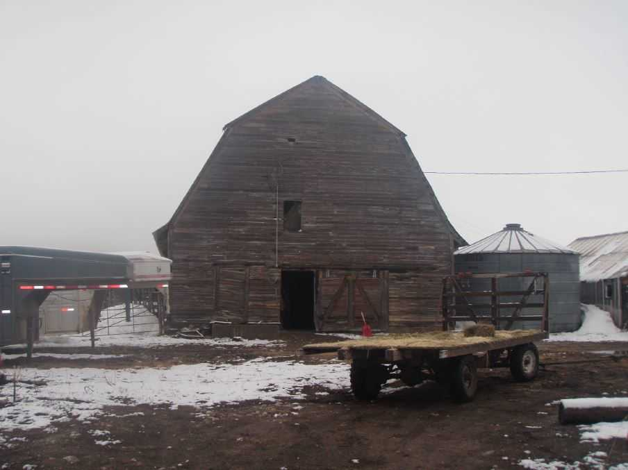 Preston Cow Barn