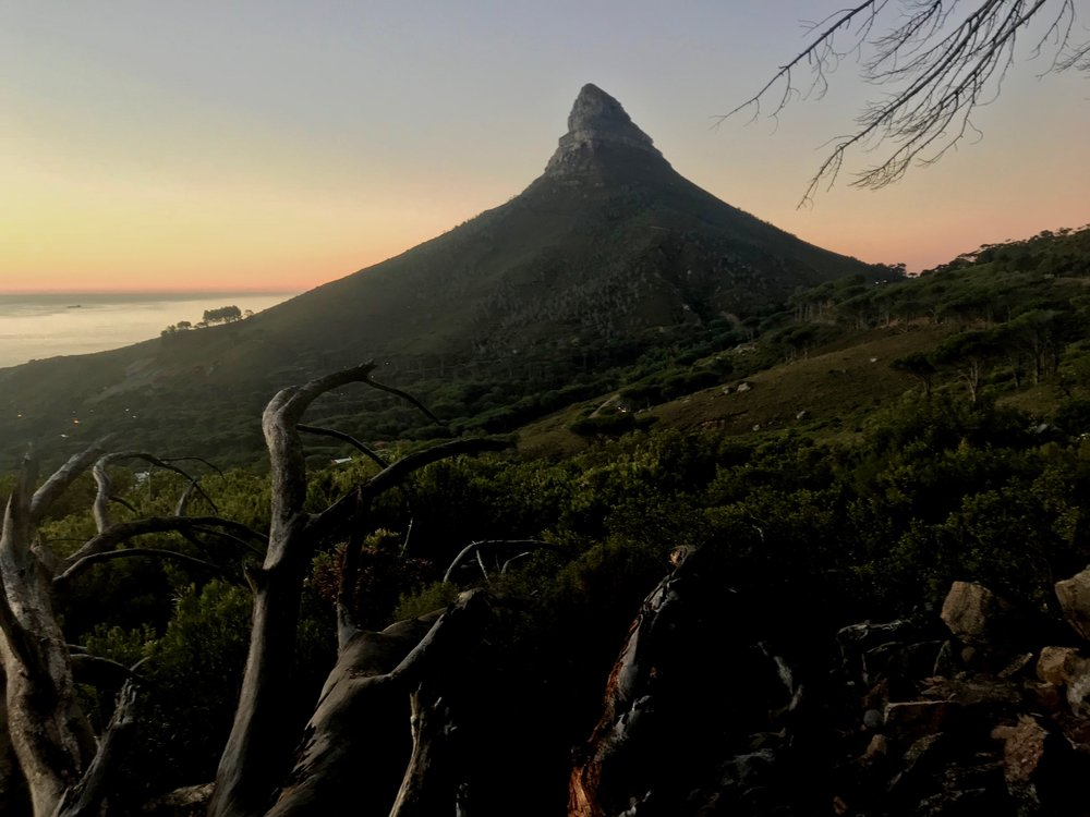 View of Lions Head, from the pipe track line.