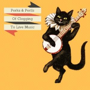 clogging-cat.jpg