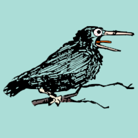 12-days-clogging-calling-bird.png