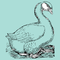 12-days-geese-clogging.png