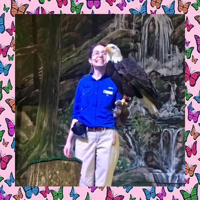 Dollywood-birds-of-prey-show-eagle.png