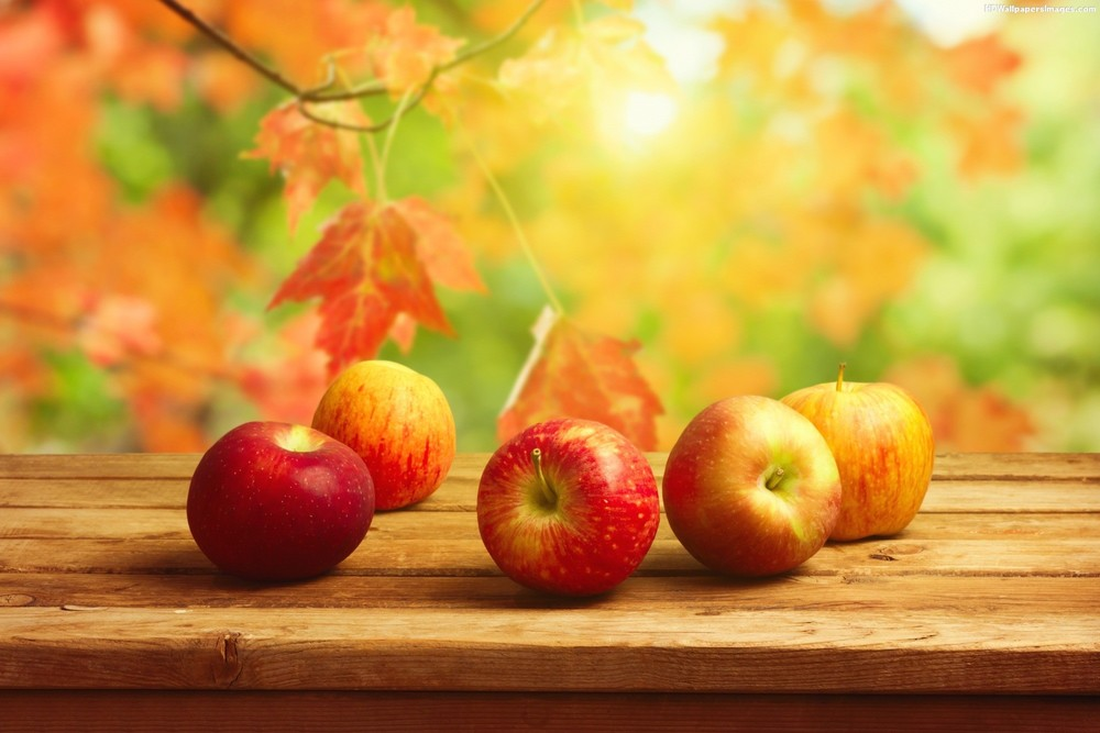 Fall-Apples-Wallpaper.jpg