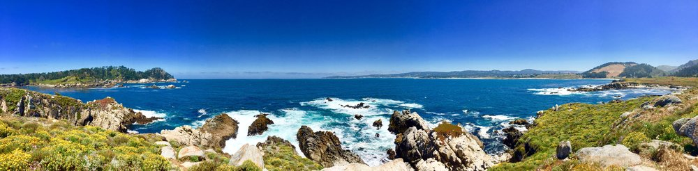 Coastline of our hike in Point Lobos! Highly recommend to anyone visiting that area. The water was the most beautiful hues of blue I've ever seen!