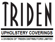 Triden.png