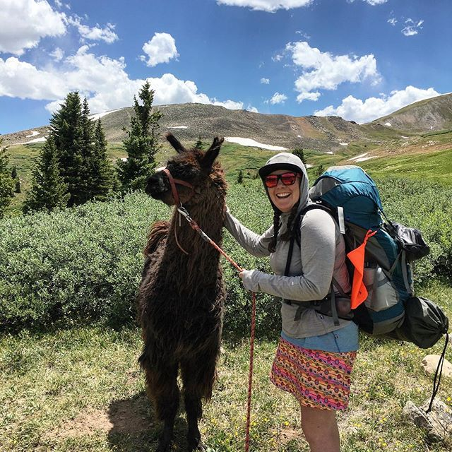 Who doesn't want to find a llama in the middle of the @fjallravenusa Classic backpacking trip? ——— Reflecting on yesterday's day of fun, this was what I was most excited about at the end of 13 Miles and 3k vertical gain. ——— Also, I was so stoked to wear my @kindapparelco skort! No chaffing, light weight and stayed in place for 2 days of hiking and 20 miles of hiking in the Colorado Alpine. ——— #fjallravenclassicusa #fjallravenclassic2018 #colorado #highalpine #backpacking