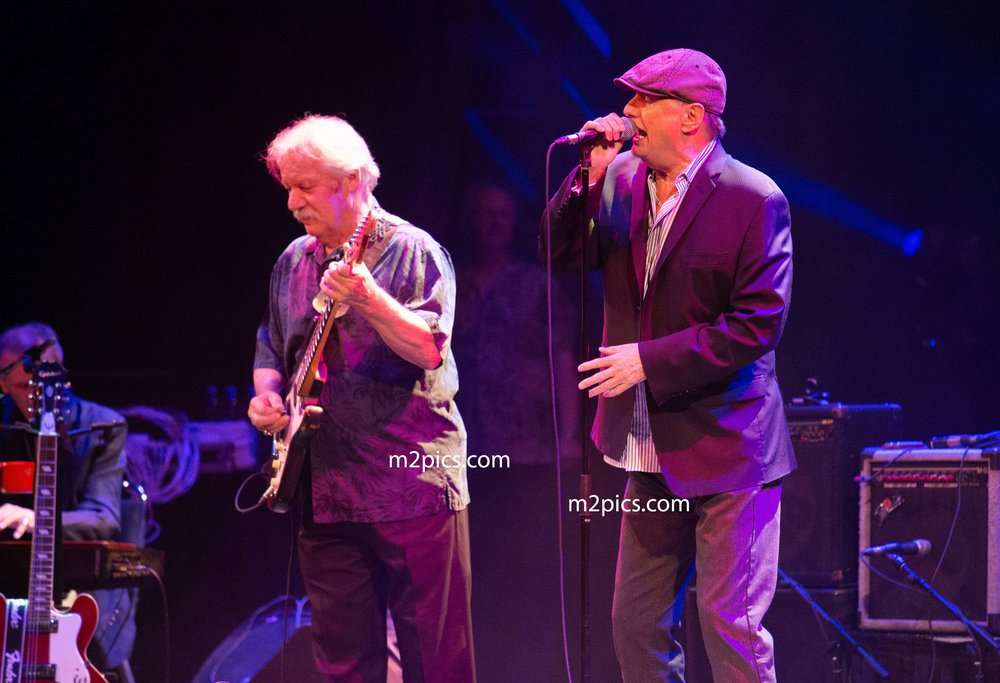 downchild blues band 38-6415 copy 2.jpg