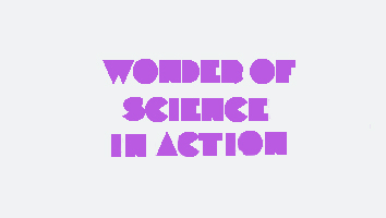 Wonder Of Science See How The Wonder Of Science Program And The Young  Science Ambassadors Are