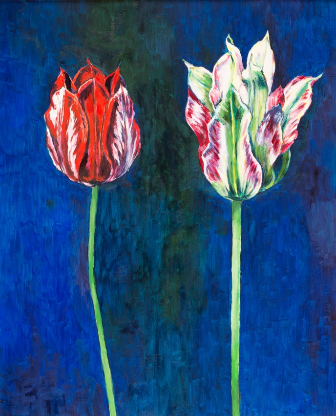 Blue Tulip by Candida Ridgwell