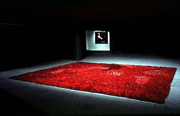"""""""Red on green"""" , 1996 - 10 000 roses (Courtesy Galerie Rodolphe Janssen)"""
