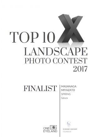 masanaga-miyazato-finalist-landscape-spring-2017.png