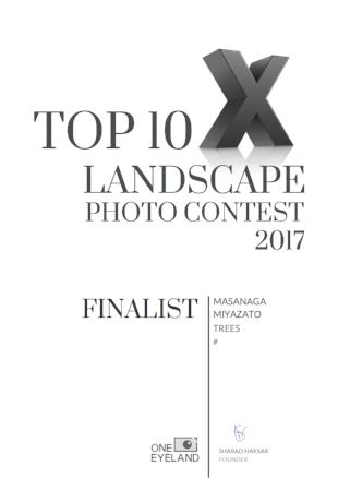 masanaga-miyazato-finalist-landscape-trees-2017.png